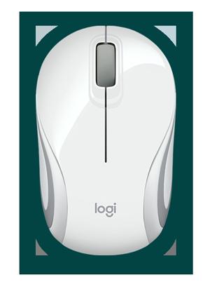 DNBon-mouse